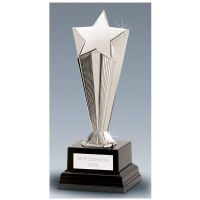 Recognition Award Star </br>C51X-02